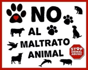El maltrato animal – Por: Isha Gorn 4to grado